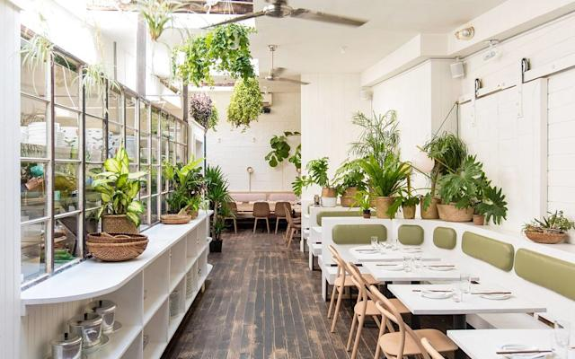Greenpoint Is The Best Restaurant Neighborhood In New York