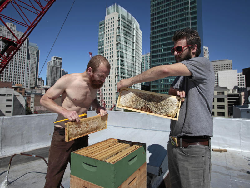 This Wednesday, June 22, 2011 photo shows beekeeper Bryon Waibel, left, of Her Majesty's Secret Beekeeper and Mike Zuckerman, right, director of sustainability for the Zen Compound, as they site a beehive and look over frames of honey on the roof of the Zen Compound in San Francisco. At Zen Compound, which is home to Temple night club and Ki restaurant in San Francisco, rooftop bees have been a fixture since 2009.  (AP Photo/Eric Risberg)