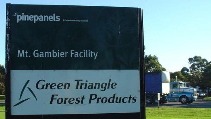 Timber workers prepare to strike