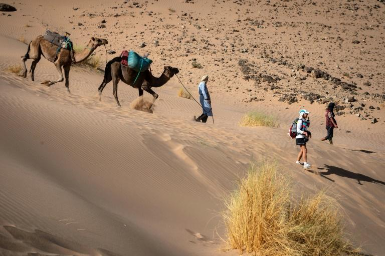 Bringing up the rear: Nadjib and his camels follow the last runners across the desert (AFP/JEAN-PHILIPPE KSIAZEK)