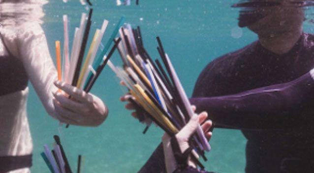 Thousands of straws have since been removed from Manly Cove by a group of dedicated volunteers. Source: Supplied