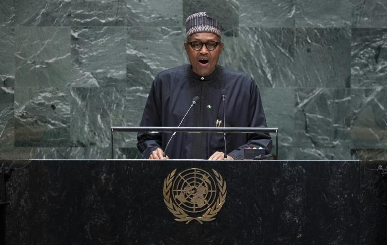 Buhari's visit was planned before mobs descended on foreign-owned properties in and around Johannesburg a month ago (AFP Photo/Johannes EISELE)