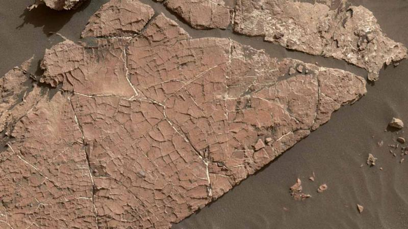 The network of cracks in this Martian rock slab called Old Soaker may have formed from the drying of a mud layer more than 3 billion years ago. NASA