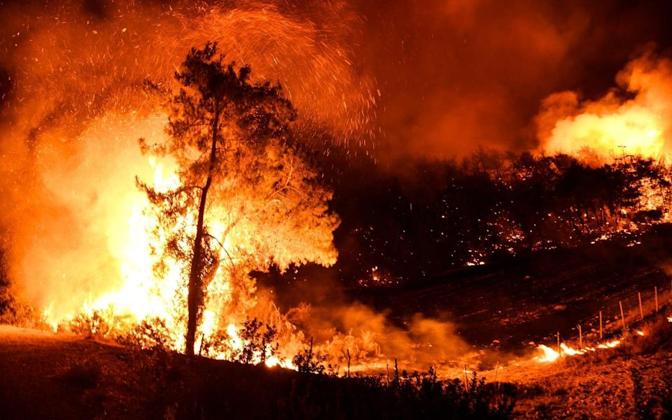 Smoke and flames rise after a forest fire broke out