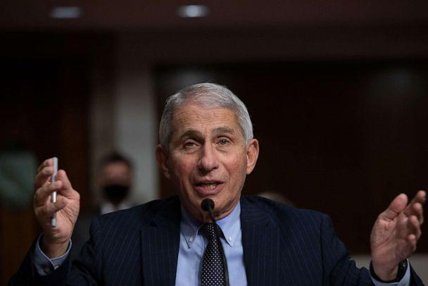 PHOTO: Anthony Fauci, director of National Institute of Allergy and Infectious Diseases at NIH, testifies at a Senate Health, Education, and Labor and Pensions Committee on Capitol Hill, Sept. 23, 2020, in Washington. (Graeme Jennings/Pool via Getty Images, FILE)