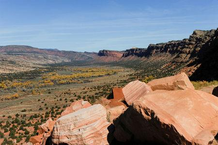 FILE PHOTO:  Comb Wash cuts from north to south through Cedar Mesa in Bears Ears National Monument near Blanding, Utah, U.S., October 27, 2017. REUTERS/Andrew Cullen/File Photo