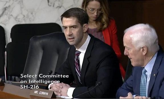 Sen. Tom Cotton during Tuesday's hearing. Credit: U.S. Senate