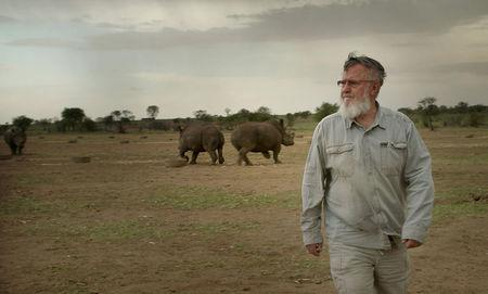 John Hume, the worlds largest rhino breeder walks among his  rhinos at Buffalo Dream Ranch, North West Province, South Africa in this November 2016 handout photo. Shaul Schwarz / Reel Peak Films/Handout via REUTERS