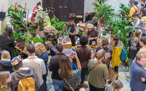 The inaugural Houseplant Festival at the Garden Museum - Credit: Graham Lacdao