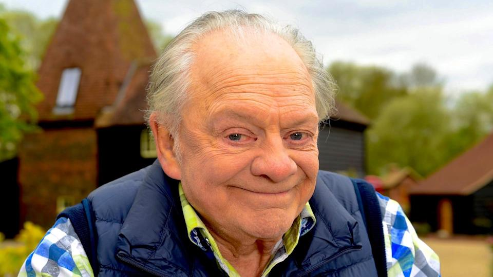 Sir David Jason (Credit: UKTV)