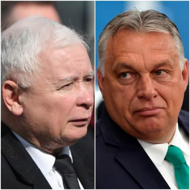 Jaroslaw Kaczynski, left, the leader of Poland's ruling Law and Justice party, and Hungary's prime minister, Viktor Orbán, right, are both staunch nationalists who have resisted the federalist vision of the European Union to which their countries belong.