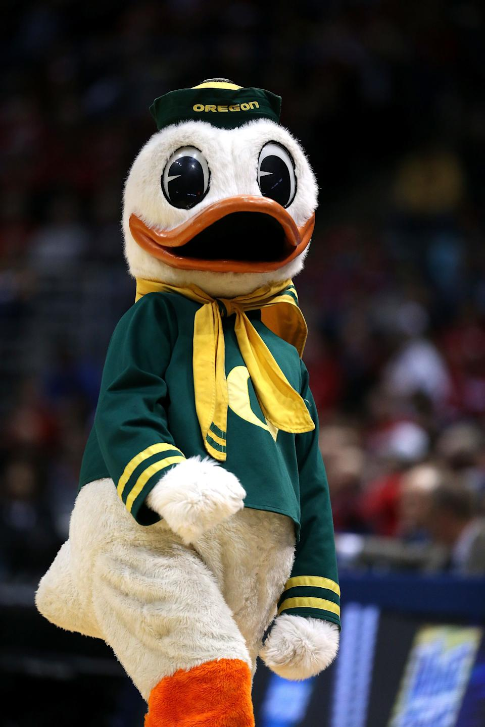 MILWAUKEE, WI - MARCH 20:  The Oregon Ducks mascot performs during the second round game of NCAA Basketball Tournament against the Brigham Young Cougars at BMO Harris Bradley Center on March 20, 2014 in Milwaukee, Wisconsin.  (Photo by Jonathan Daniel/Getty Images)