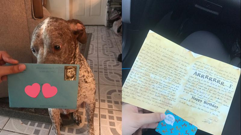 Birthday cards sent to Rebecca Hernandez's dog from her ex, Frankie. Photo from Twitter