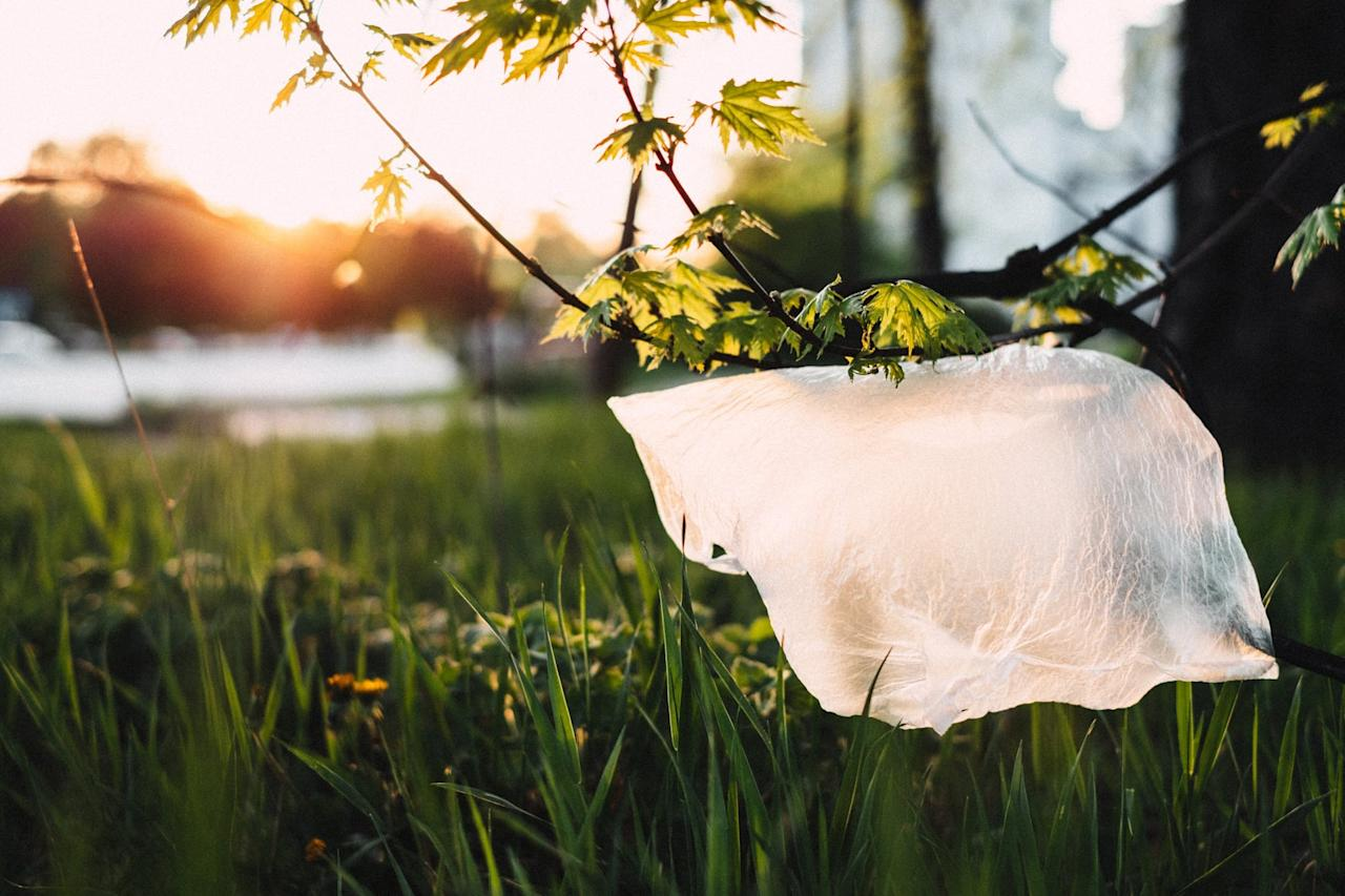 """<p>Plastic bags are non-biodegradable, meaning they can <a href=""""https://www.thebalancesmb.com/how-long-does-it-take-garbage-to-decompose-2878033"""" target=""""_blank"""" class=""""ga-track"""" data-ga-category=""""Related"""" data-ga-label=""""https://www.thebalancesmb.com/how-long-does-it-take-garbage-to-decompose-2878033"""" data-ga-action=""""In-Line Links"""">take anywhere from 10 to 1,000 years to decompose</a>.</p>"""