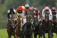 The Head Family counted their blessings after Treve failed to find a buyer at the sales as she went on to win two Prix de l'Arc de Triomphes sweeping to a five length victory in her first in 2013 leaving Japanese favourite Orfevre trailing (AFP/FRED DUFOUR)