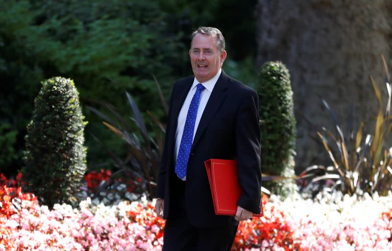 UK to nominate ex-minister Liam Fox as WTO boss - Spectator