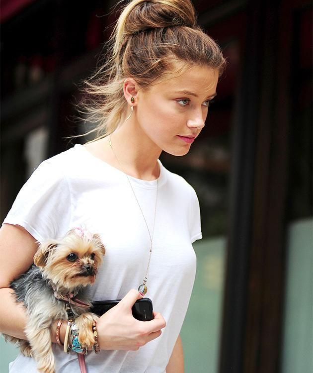 Amber Heard and her dog in New York City. Photo: Getty