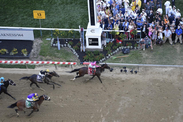 Jockey Tyler Gaffalione wins aboard War of Will during the Preakness Stakes horse race at Pimlico Race Course, Saturday, May 18, 2019, in Baltimore. Joel Rosario rides Everfast (10) for second and Florent Geroux rides Owendale for third. (AP Photo/Nick Wass)