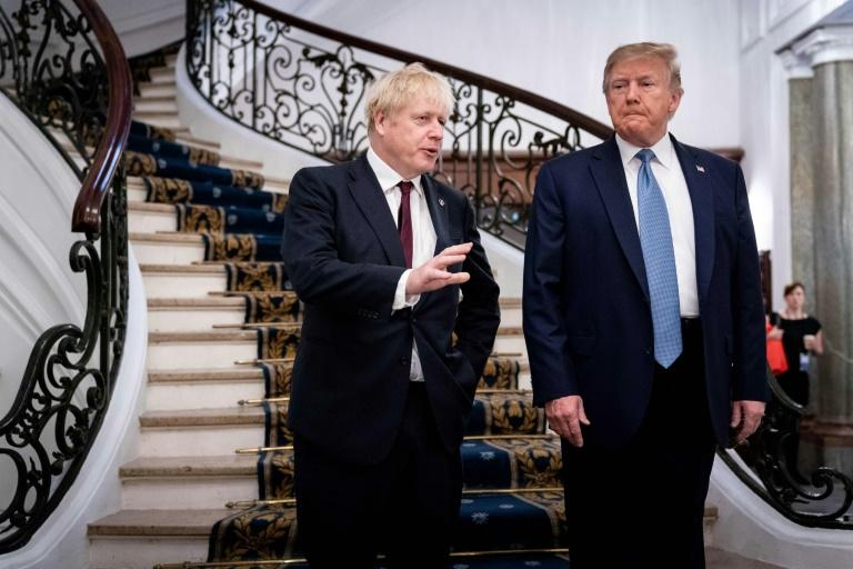 US President Donald Trump gets on well with Britain's Prime Minister Boris Johnson -- in part because of Brexit (AFP Photo/Erin Schaff)