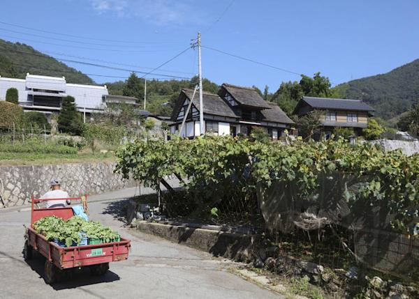 Kamijo is famous for its thatched-roof houses