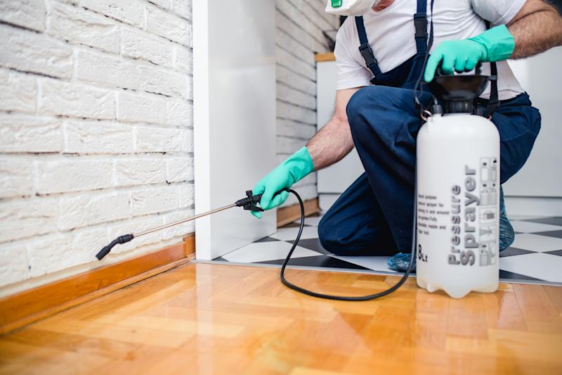 A pest-control specialist sprays the floorboards of a house.