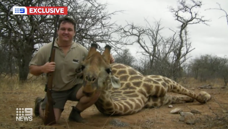 Jewell Crossberg poses with a gun in his right hand and his left arm around the head of a dead giraffe.