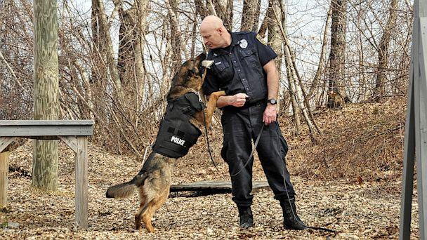 HT k9 raimo officer dwane foisy 16x9 608 Vested Interest in K 9s Arms Police Dogs with Bulletproof Vests