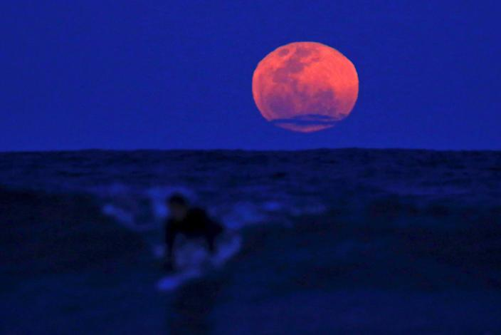 A surfer catches a wave on his board as a super moon rises in the sky off Manly Beach in Sydney, Australia, September 28, 2015. The astronomical event occurs when the moon is closest to the Earth in its orbit, making it appear much larger and brighter than usual. REUTERS/David Gray