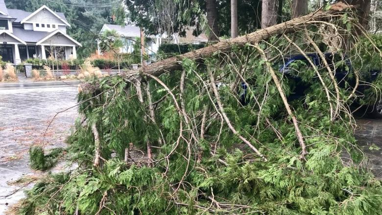 Wind wreaks havoc, leaves thousands without power in B.C.