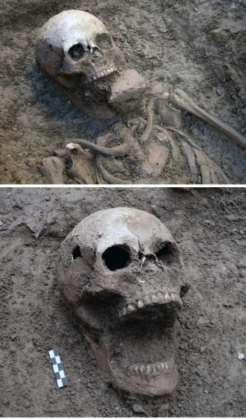 """A skeleton buried in the cemetery of Vecchiano in Pisa showing a similar condition to the purported """"Venetian vampire."""""""