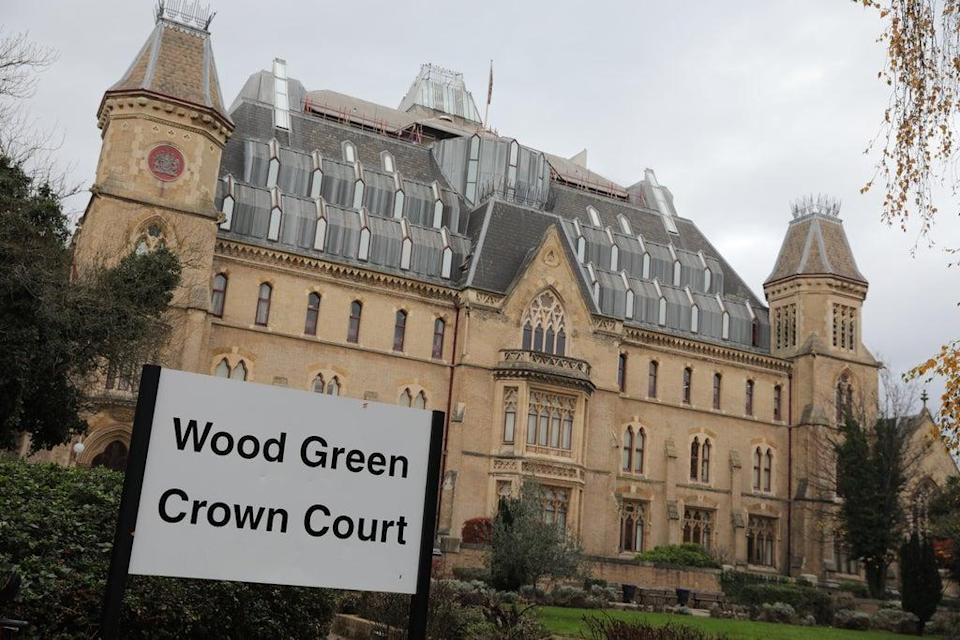 Asha Patel was sentenced at Wood Green Crown Court (PA Archive)