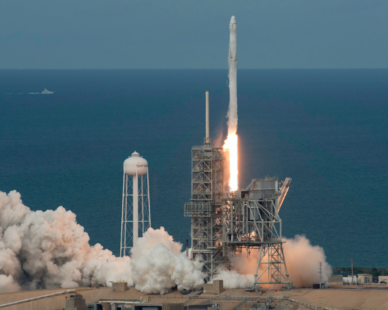 The worm was one of a group that traveled on a SpaceX rocket in January 2015. Photo: AP images