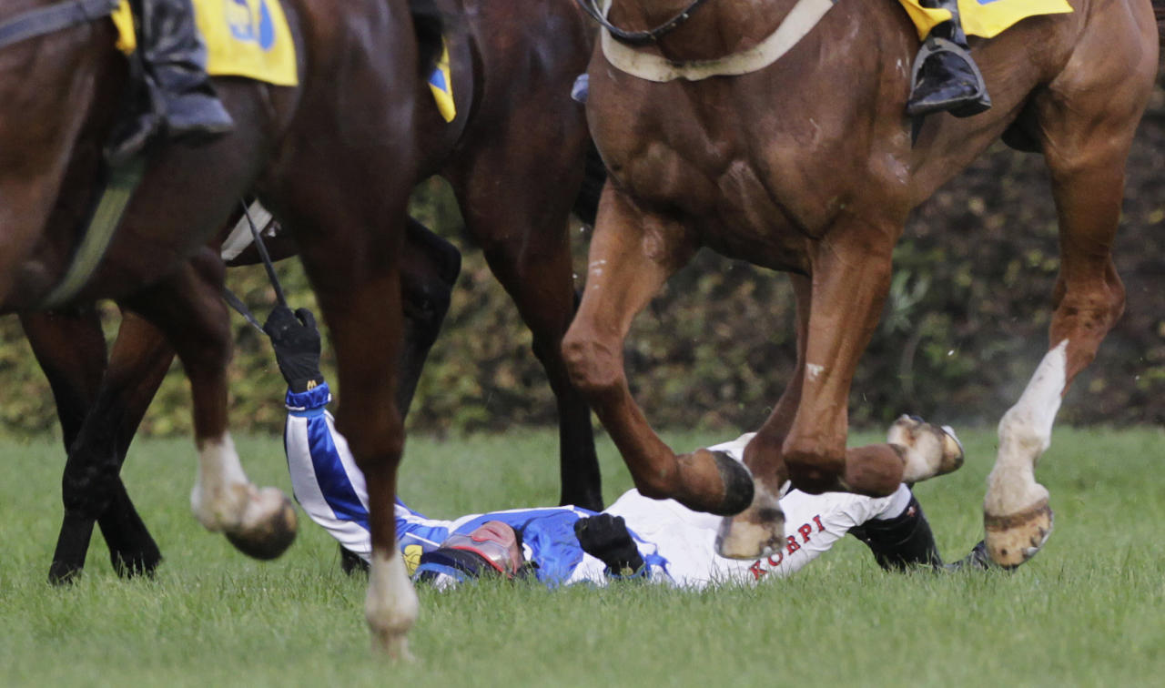 Czech Republic's rider Josef Sovka lays on the ground after the Big Taxis obstacle during the 122nd Velka Pardubicka Steeplechase horse race in Pardubice October 13, 2012. REUTERS/David W Cerny (CZECH REPUBLIC - Tags: SPORT HORSE RACING)