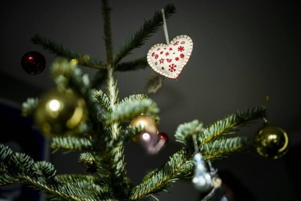 B.C. Christmas tree growers say the June heat wave has had a serious impact on their crops — and buyers should expect singed trees come the holiday season. (Odd Andersen/AFP/Getty Images - image credit)