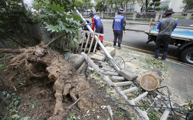 Workers try to recover damaged fence and tree after Typhoon Tapah passed in Busan, South Korea, Monday, Sept. 23, 2019. A powerful typhoon battered southern South Korea, injuring 26 people and knocking out power to about 27,790 houses, officials said Monday. (Son Hyung-joo/Yonhap via AP)