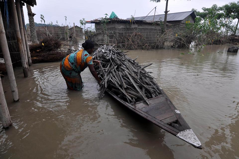 DARRANG ,INDIA-JULY 21,2020:A flood affected women collect firewood at Puthimari village in Darrang District of Assam ,india - PHOTOGRAPH BY Anuwar Ali Hazarika / Barcroft Studios / Future Publishing (Photo credit should read Anuwar Ali Hazarika/Barcroft Media via Getty Images)