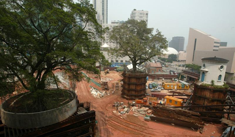 Luxury hotel Heritage 1881 called on by Hong Kong government to save 100-year-old tree felled by Typhoon Mangkhut