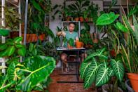 The pandemic lockdowns have fuelled interest in collecting potted plants in Malaysia