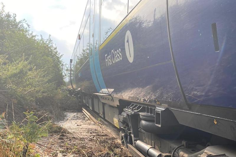 Nineteen people were evacuated from the train, which came to a halt between West Malling and Borough Green (PA)