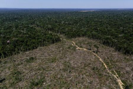 "FILE PHOTO: An aerial view shows deforested land during ""Operation Green Wave"" conducted by agents of the Brazilian Institute for the Environment and Renewable Natural Resources, or Ibama, to combat illegal logging in Apui"