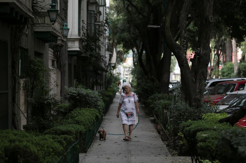 An elderly woman walks with a dog on the street after Mexico's government declared a health emergency on Monday and issued stricter rules aimed at containing the fast-spreading coronavirus disease (COVID-19), in Mexico City