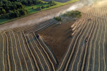 FILE PHOTO: An aerial view shows combines harvesting wheat in a field of the Solgonskoye private farm outside the Siberian village of Talniki in Krasnoyarsk region