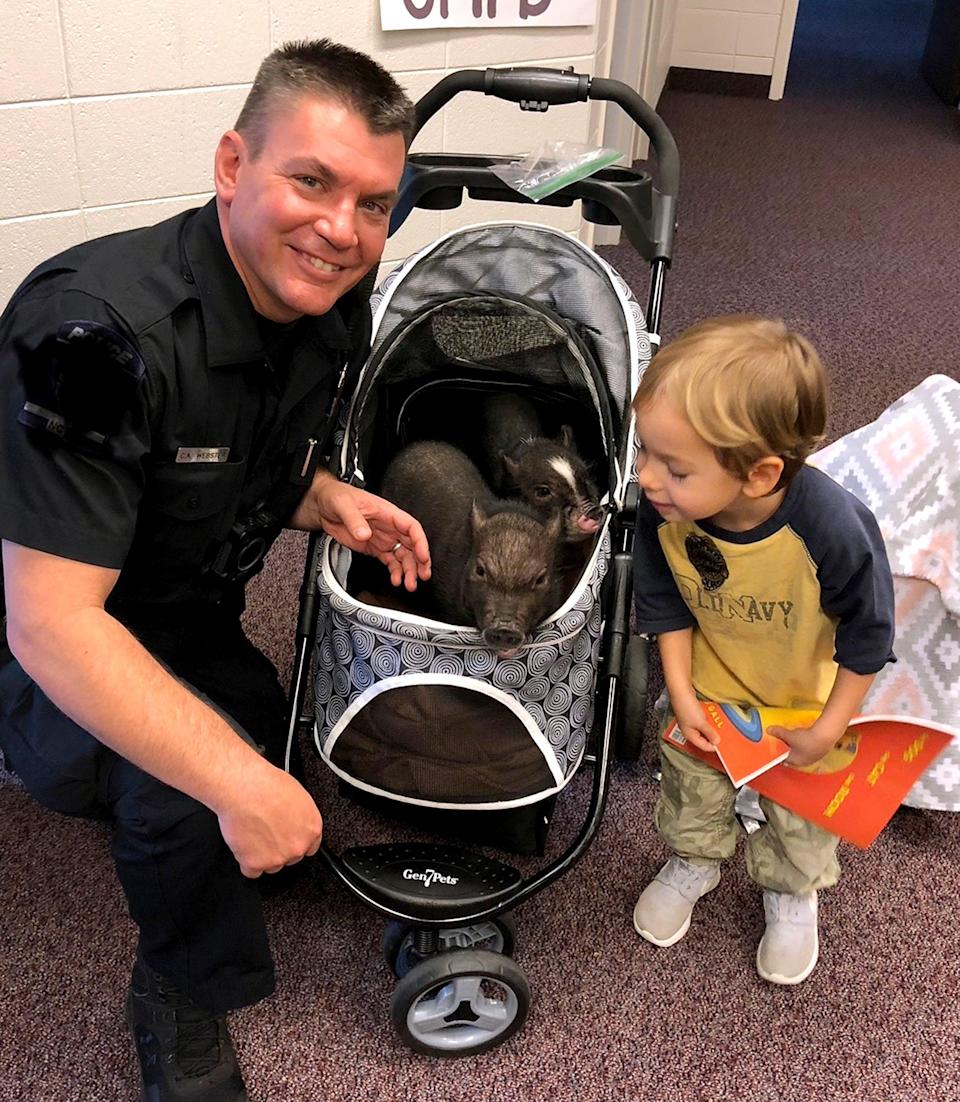 'Bacon Response Team': Police Officer's Pigs Bring Cheer to N.C. Children Who Have Lost a Sibling