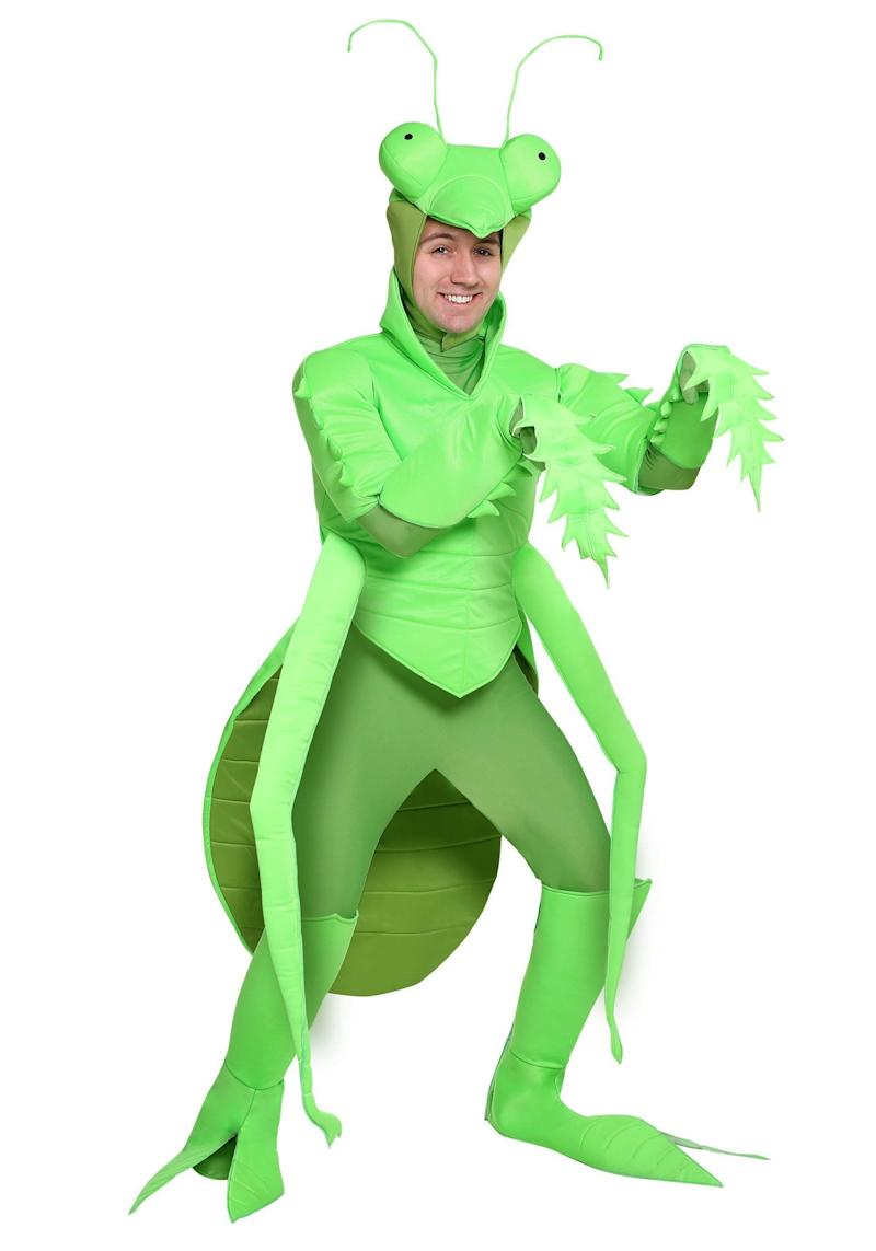 """Dressing up as a <a href=""""https://www.halloweencostumes.com/adult-praying-mantis.html"""" target=""""_blank"""">praying mantis</a> is weird enough, but if you really want to bug people, tell them you're making a statement about how insects can be religious as well. If anyone gripes, just say, """"Hey, at least I'm not the Pickle Apron guy."""""""