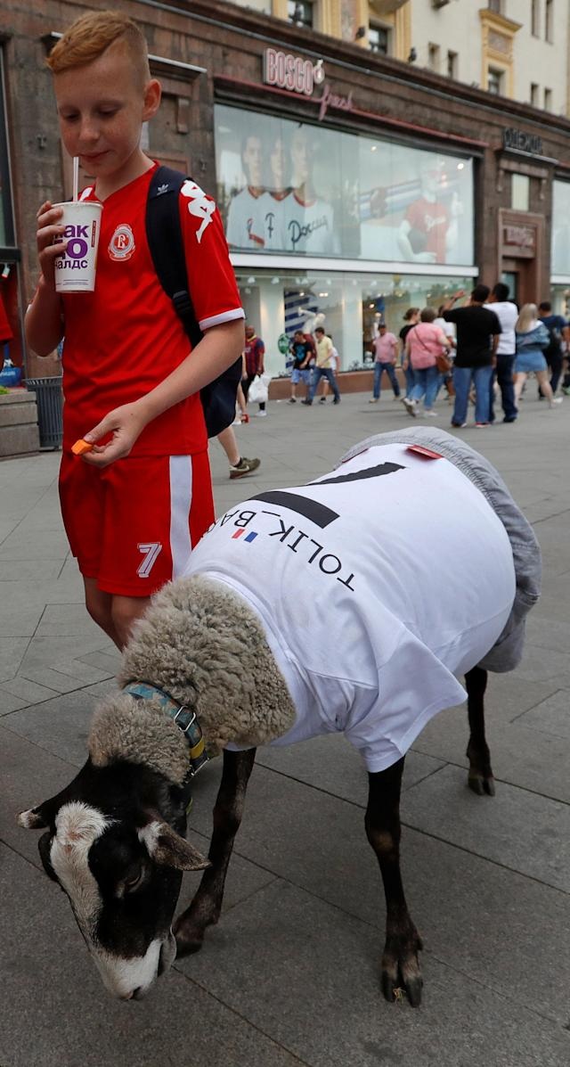 A boy stands next to a sheep, dressed in a jersey with a flag of France, in a street in Moscow, a host city for the soccer World Cup, Russia June 24, 2018. REUTERS/Sergei Karpukhin