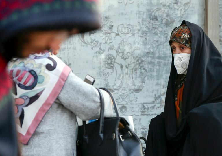 An Iranian woman wearing a breathing mask walks down a street as a blanket of smog covers Tehran (AFP Photo/STR)