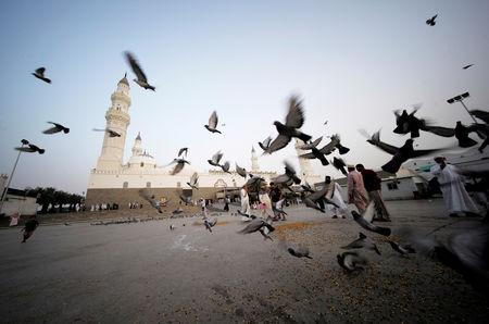 A child is seen playing with pigeons in the ground of Al-Quba mosque, after morning prayers during the holy month of Ramadan in Madina