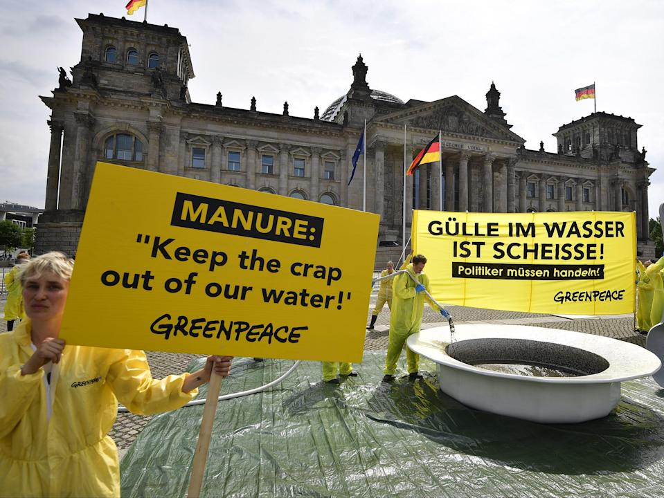 Manure from agriculture can cause water pollution but MEPs were accused of failing to tackle the problem (AFP via Getty Images)