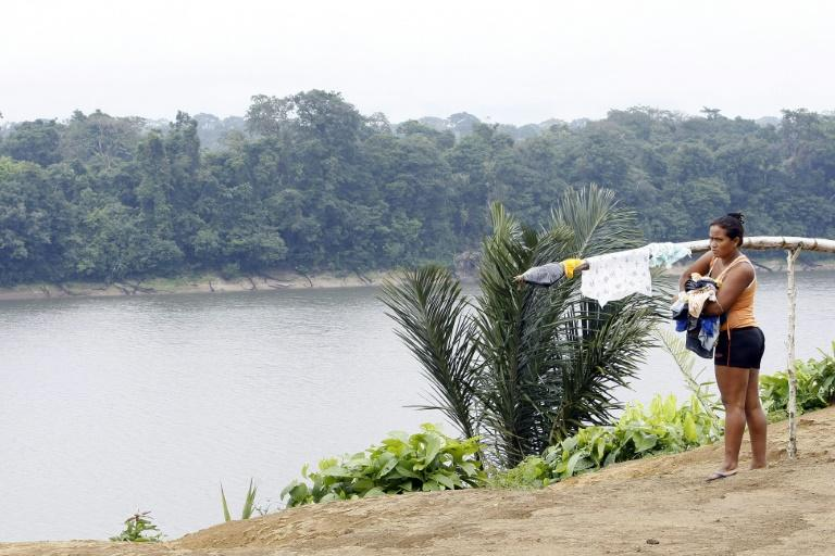 New worry over August deforestation in Brazilian Amazon