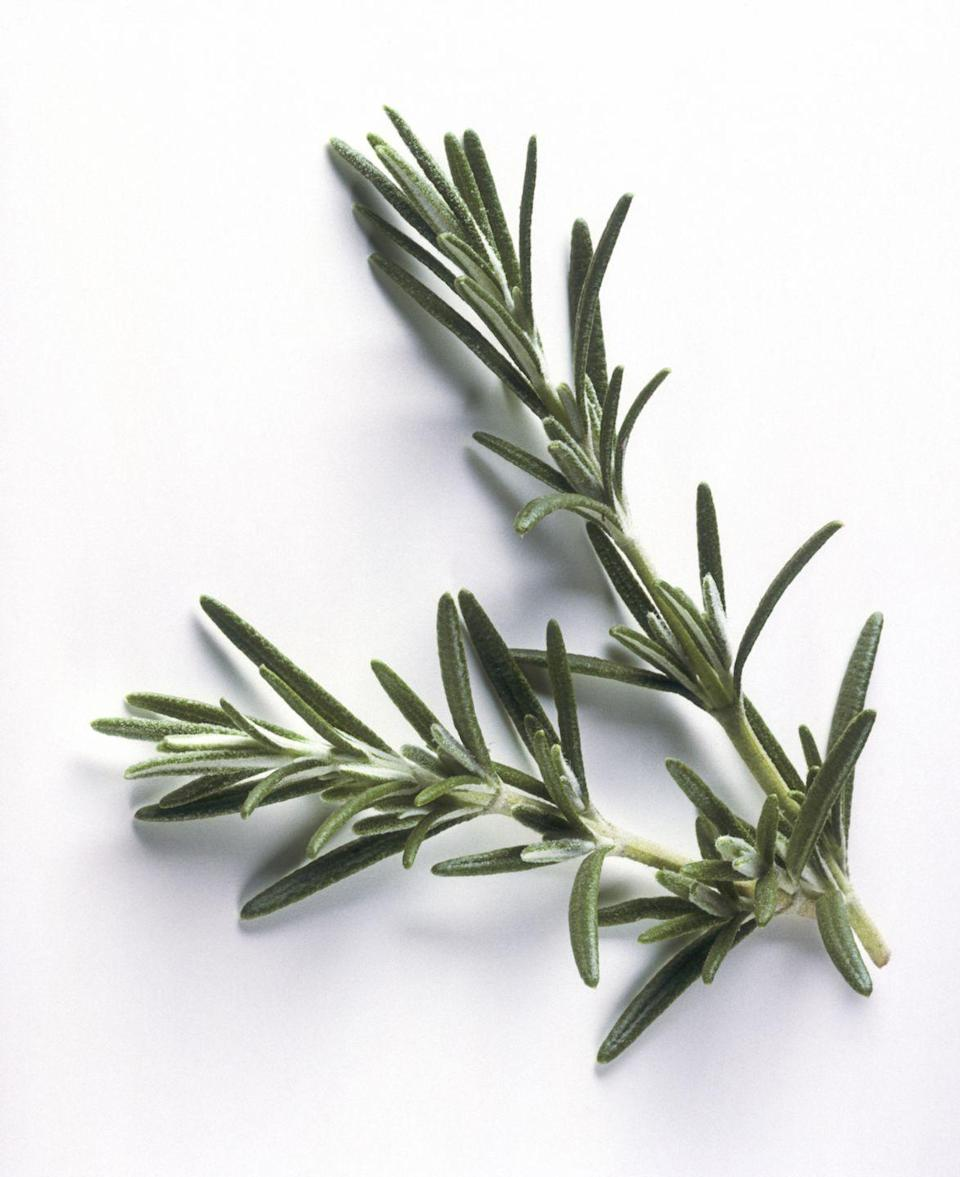 <p>Rosemary is a must for those that like to cook, flavoring rich fall stews and adding a crips fragrance to seasonal arrangements.</p><p><strong>When it blooms: </strong>Spring to fall</p><p><strong>Where to plant:</strong> Full sun</p><p><strong>When to plant: </strong>Spring, after last frost</p><p><strong>USDA Hardiness Zones: </strong>6 to 10</p>